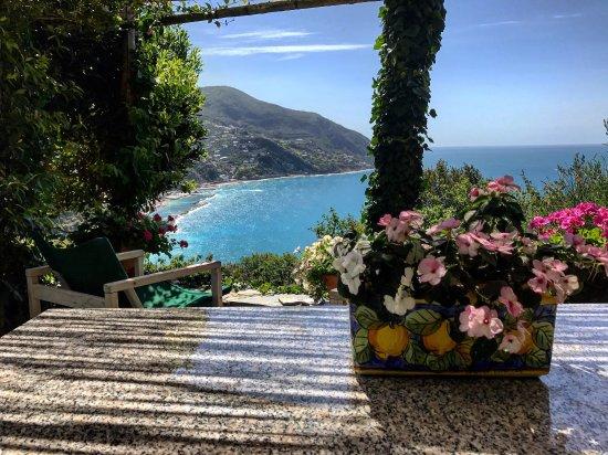 photo0.jpg - Picture of Sussurri Di Mare / SeaWhispers, Moneglia ...