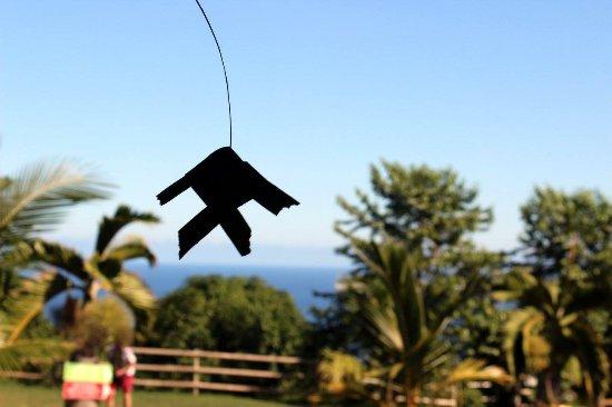 tressage des feuilles de coco picture of la maison du coco leu tripadvisor