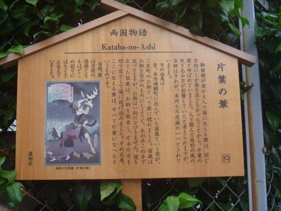 Kataba no Ashi