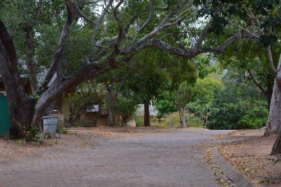 Skukuza Rest Camp : Área