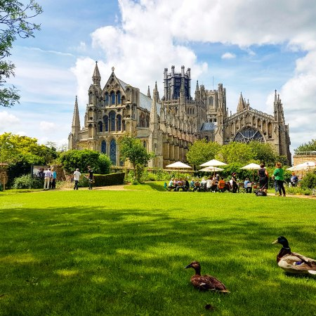 Ely Cathedral from the Almonry Restaurant gardens.