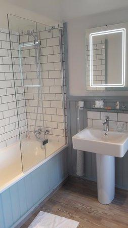 Rashleigh Arms: bathtub shower and handbasin