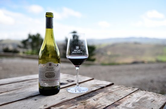 Montalto delle Marche, İtalya: A glass of wine, sourronded by a wonderful landscape
