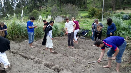 Salasaca, Эквадор: Georgetown University students support the traditional/sustainable agriculture program in Salasa