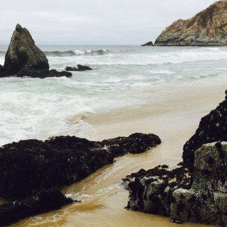 Gray Whale Cove State Beach: photo1.jpg