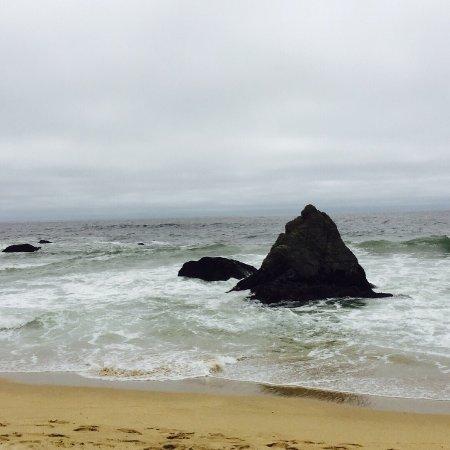 Gray Whale Cove State Beach: photo2.jpg