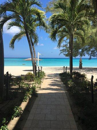 Casa Caribe: On the walk toward the beach
