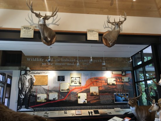 Boone And Crockett Club Missoula All You Need To Know