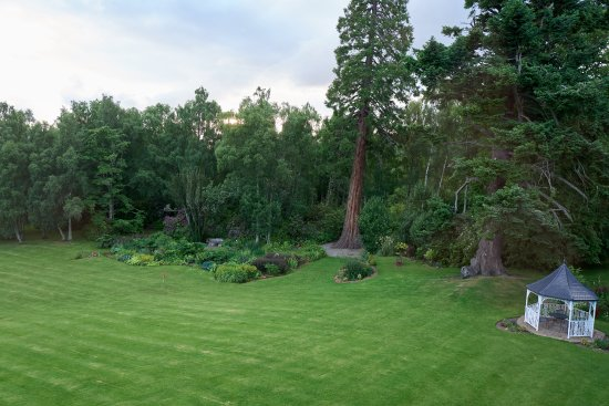 Coul House Hotel: View of garden from our window
