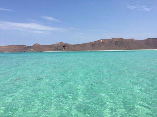 Marlin Adventures: Foto tomada desde la isla, aguas cristalinas perfectas para snorkelear.