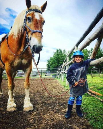 Linn Canyon Ranch: Big horse, little girl, giant smile!