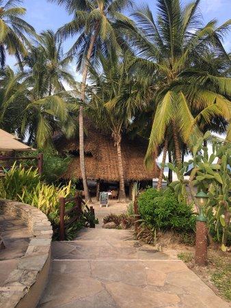 Pinewood Beach Resort & Spa: photo2.jpg