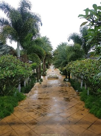 The Serai: Walk way to the villas