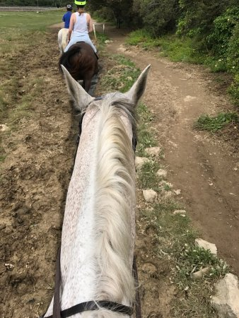 Newquay Riding Stables: photo0.jpg