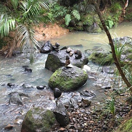 Piha, New Zealand: photo4.jpg