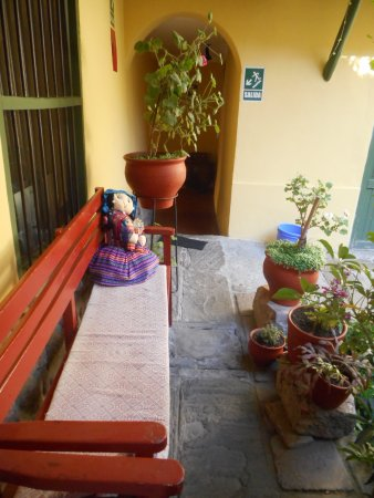 Hostal Mallqui: Relax with your tea in the garden and wait for the hummingbirds to squawk...