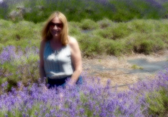 East Marion, NY: Enjoying the lovely scent of the lavender.