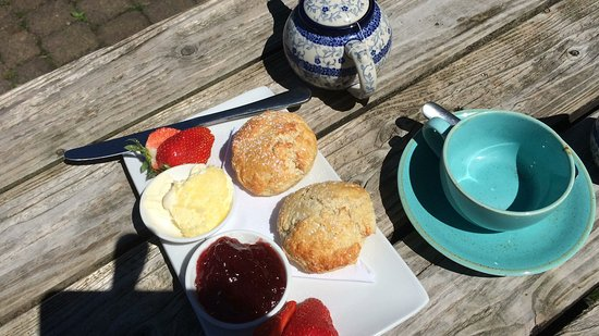 Newlyn, UK: Freshly baked scones for an excellent cream tea