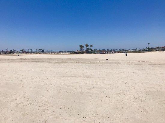 Seal Beach, CA: photo8.jpg