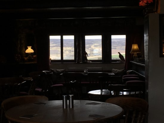 The Pack Horse Inn: moor views through every window