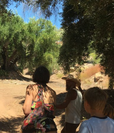 Ojai, CA: Stunning scenery and an interesting tour