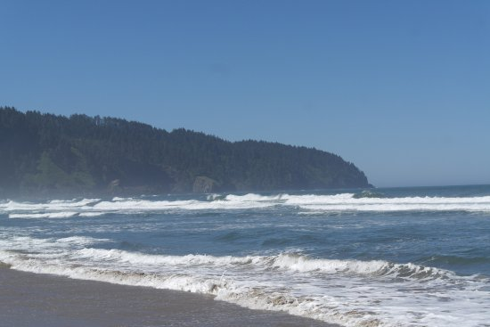Cape Lookout State Park: Toward the south