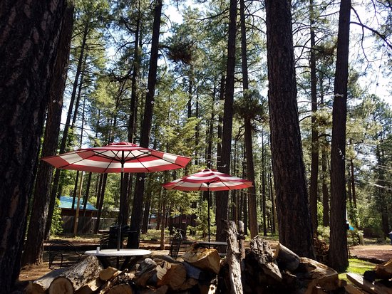 TimberLodge Inn : Tables and chairs under the trees in July
