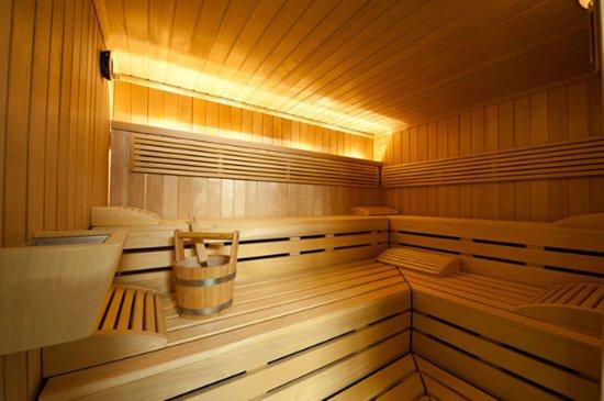 هوتل ألبين لودج: Sauna