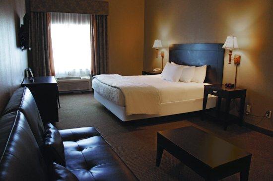 Alamo, TX: Guest Room