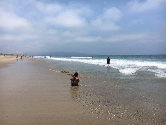 Manhattan Beach, CA: photo3.jpg