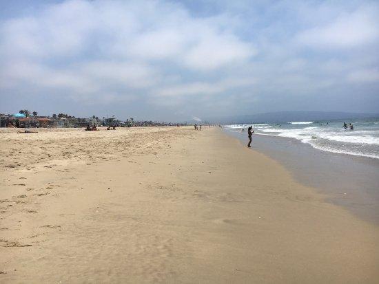 Manhattan Beach, CA: photo7.jpg