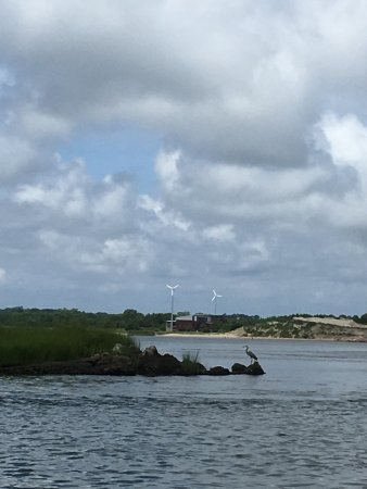 Bay Venture Boat Rentals