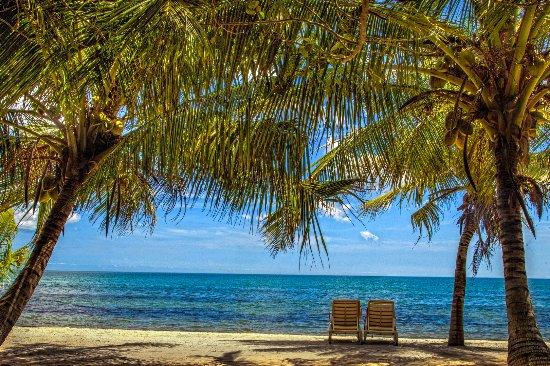 Belize Tours Unlimited