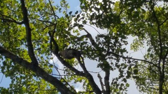 Killingly, CT: Stateline Campresorts & Cabins