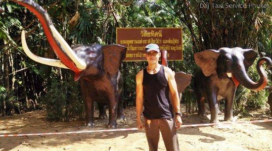 Rawai, Tailandia: Mr.Daj and Elephant Trekking Program