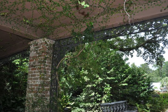 Theodore, AL: Vines added a great touch to the structures.
