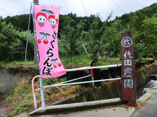 Shirota Farm