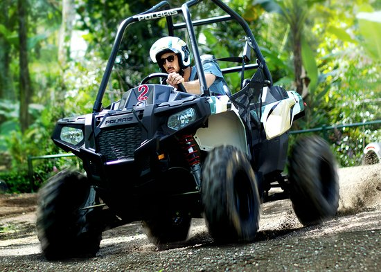 Tegalalang, Indonesia: Mason Jungle Buggies
