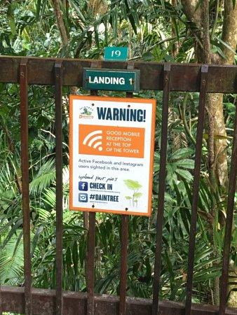 Cow Bay, Αυστραλία: warning good phone reception!!