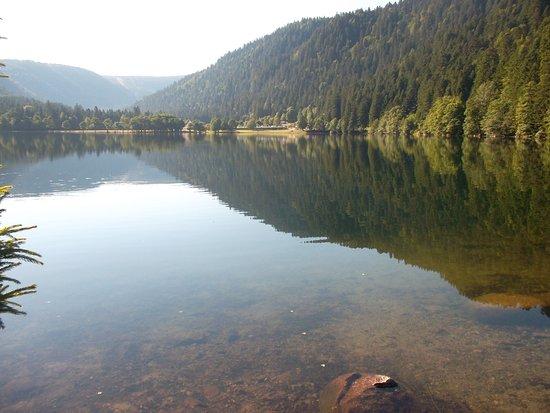 Camping Les Jonquilles : eau claire
