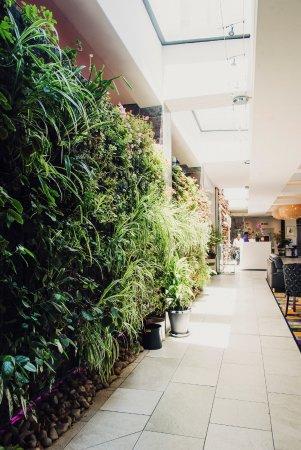 Hotel Verde Cape Town International Airport : Living wall
