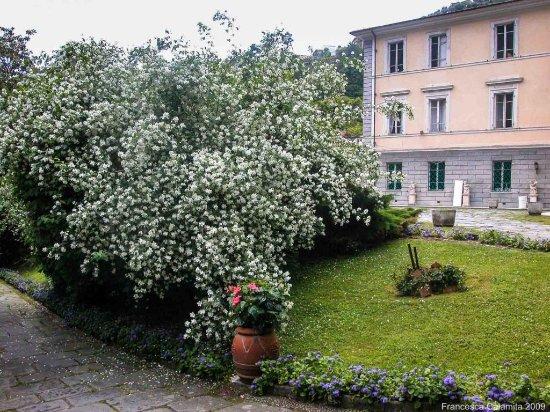 Villa Schiff - Giorgini