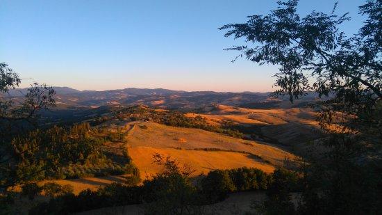 Trattoria Albana: DSC_0006_14_large.jpg