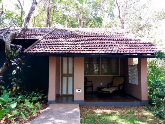 Sigiriya Village Hotel : my beautiful room.