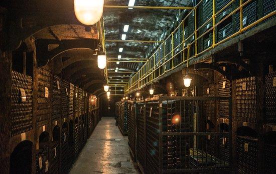 Massandra Winery: Wine bottle cellar.