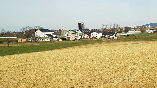 Amish Country Driving Tour Pa
