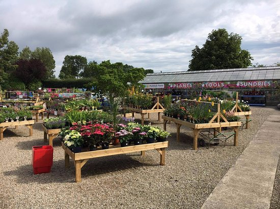 Paddock Farm Nursery & Water Gardens