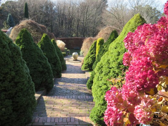 Cloudehill Nursery And Gardens Lovely Winter Garden