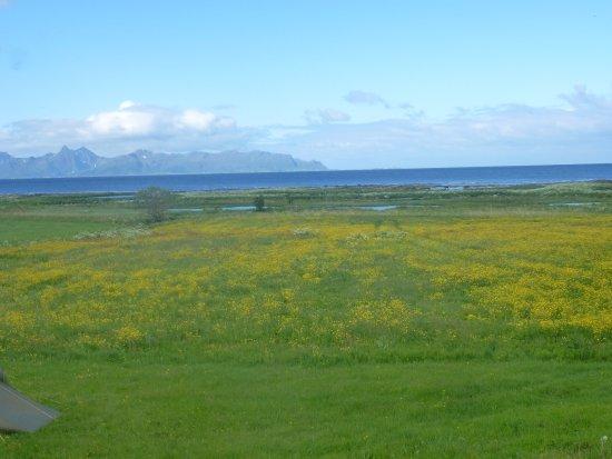 Risoyhamn, Noruega: Aussicht von der Zeltwiese beim Hotel