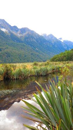 Fiordland National Park, Selandia Baru: Mirrored image on the lake